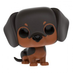 Pop Animaux (Pets) Dogs Dachshund