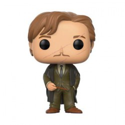 Figurine Pop Harry Potter W4 Remus Lupin (Rare) Funko Boutique Geneve Suisse