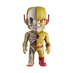 Figuren DC Comics Reverse Flash X-Ray von Jason Freeny Figuren und Zubehör Genf