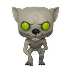 Figurine Pop Harry Potter Werewolf Remus Lupin Edition Limitée Funko Boutique Geneve Suisse