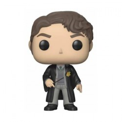 Figur Pop Harry Potter Tom Riddle Funko Geneva Store Switzerland