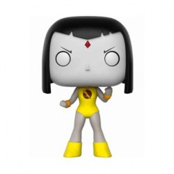 Figur Pop DC Teen Titans Go! Raven Lady Legasus Limited Edition Funko Geneva Store Switzerland