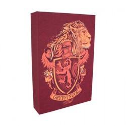 Figuren Harry Potter Gryffindor Licht Leinwand Luminart Paladone Genf Shop Schweiz