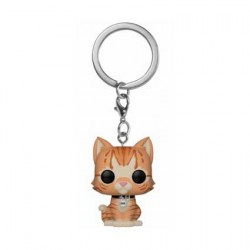 Figurine Pop Pocket Porte Clés Marvel Goose the Cat Funko Boutique Geneve Suisse