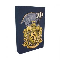 Figuren Harry Potter Hufflepuff Licht Leinwand Luminart Paladone Genf Shop Schweiz