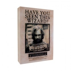 Figurine Harry Potter Sirius Black Toile Lumineuse Luminart Paladone Boutique Geneve Suisse