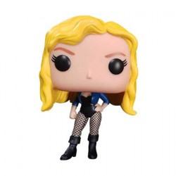 Figuren Pop ECCC 2019 Green Arrow Black Canary Limitierte Auflage Funko Genf Shop Schweiz