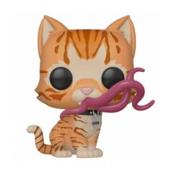 Figuren Pop Marvel Captain Marvel Goose the Cat Flerken Limitierte Chase Auflage Funko Genf Shop Schweiz