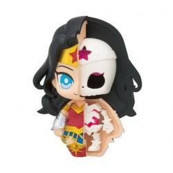 Figurine Justice League Kaitai Fantasy Wonder Woman MegaHouse Boutique Geneve Suisse