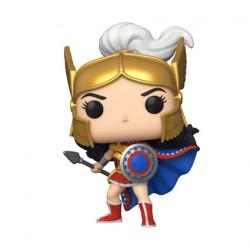 Figur Pop DC Comics Heroes Wonder Woman 80th Challenge Of The Gods Funko Geneva Store Switzerland